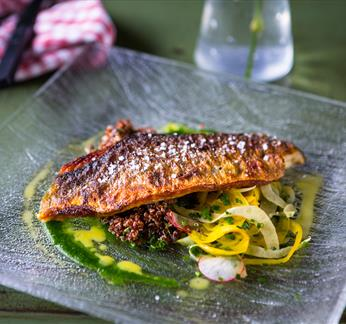 Pan fried fillet of Seabass, red quinoa, pickled fennel & radish salad